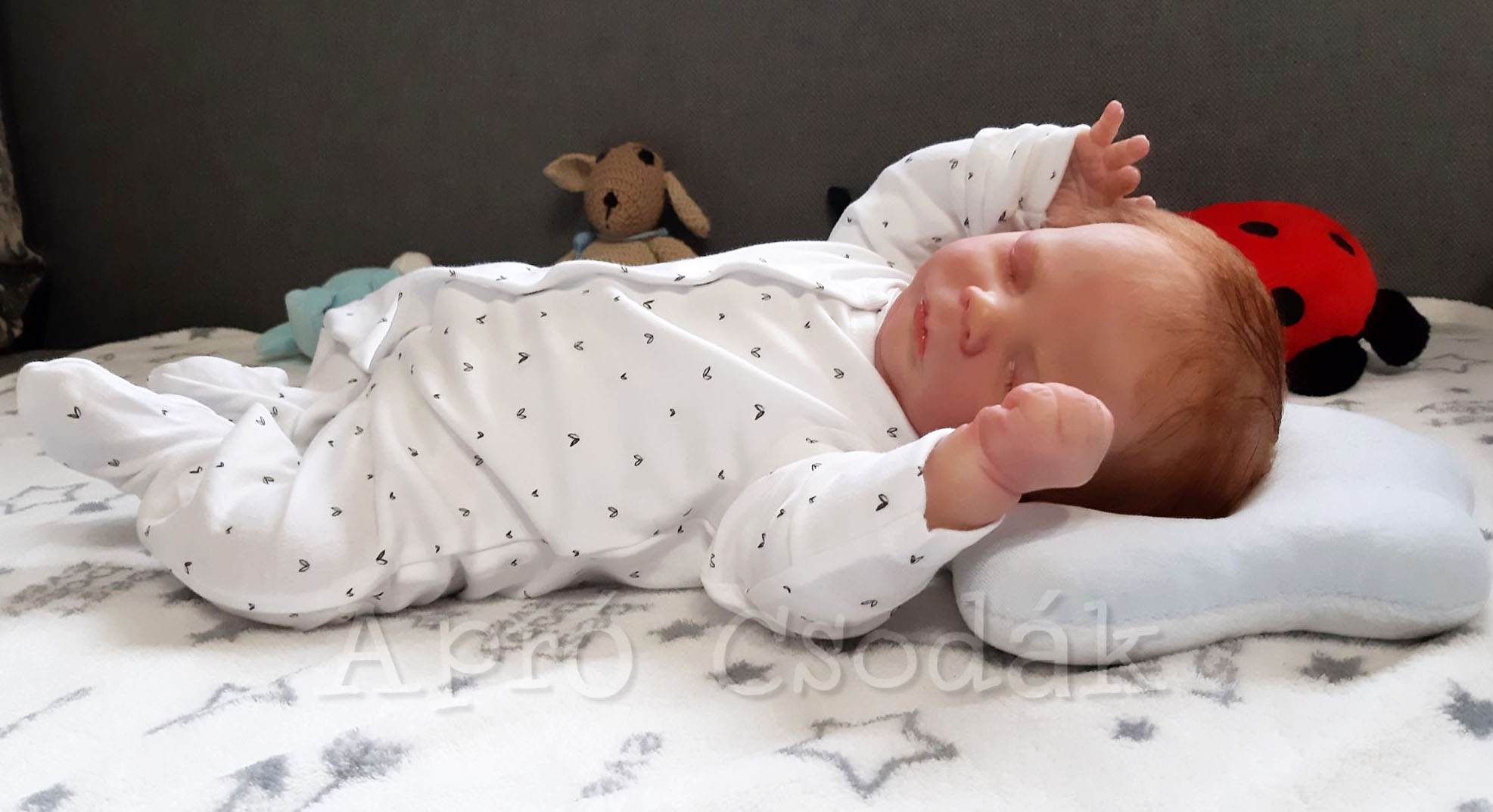 Elkészült a reborn babás honlap tartalomfejlesztése