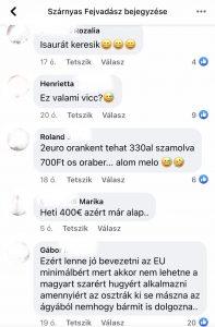 Facebook-nyelvhasználat: egy álláshirdetés kommentjei a Szárnyas Fejvadász oldalán