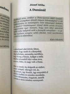 Magyar táj, magyar ecsettel – József Attila: A Dunánál (Kótis Nikoletta ajánlásával)